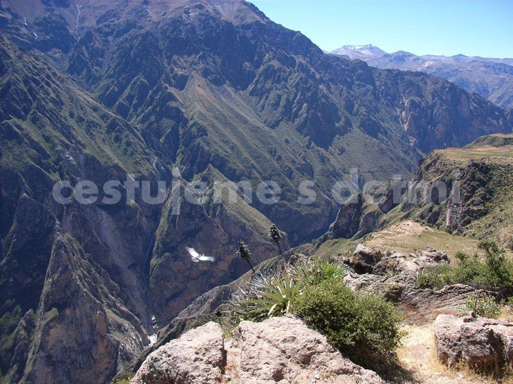 Peru canyon de Colca