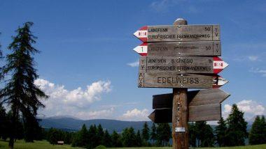 kudy kam na Planině Saltner