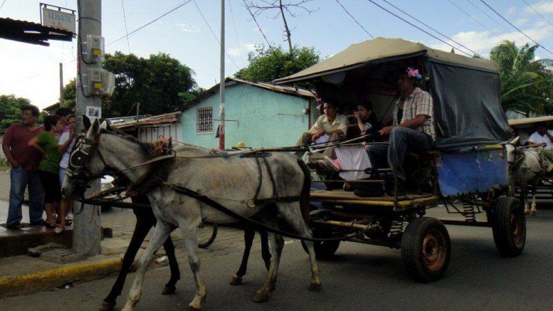 koňský povoz- nejen turistická atrakce