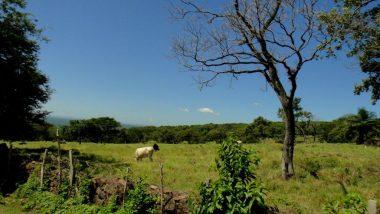 krajina v Nikragui