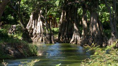 říčka ústící do jezera Nikaragua