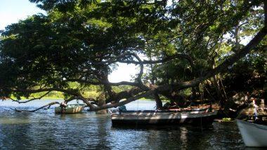 ostrovy okolo Granady na jezeře Nikaragua