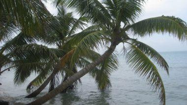Karibské ostrovy - východní pobřeží Nikaragui