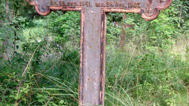 kříž na zarůstajícím hřbitově