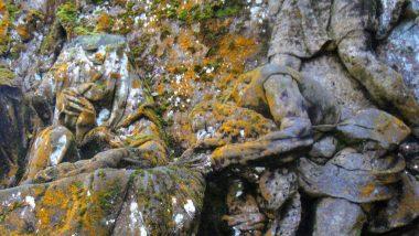 sochy zarostlé mechem a lišejníky
