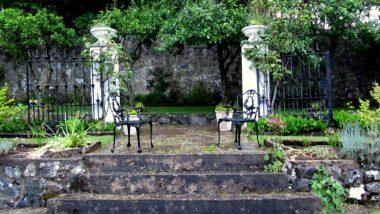 zahrada ve Scourie