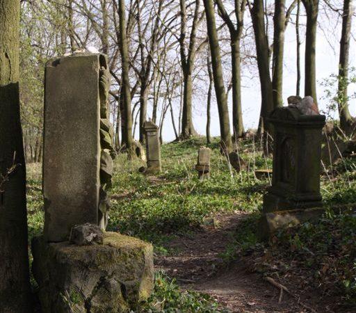 Židovský hřbitov u Bosyně