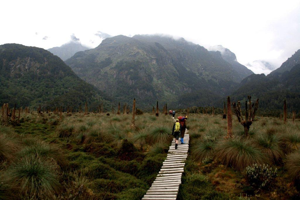 Ruwenzory mountains