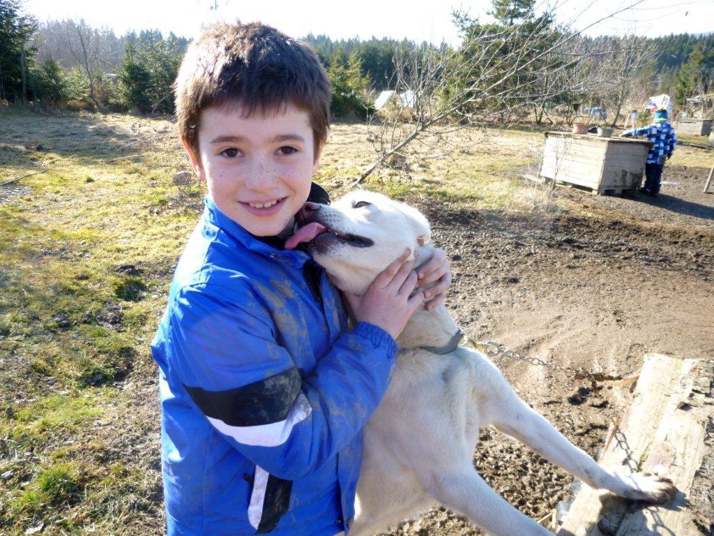 děti psy miluji!