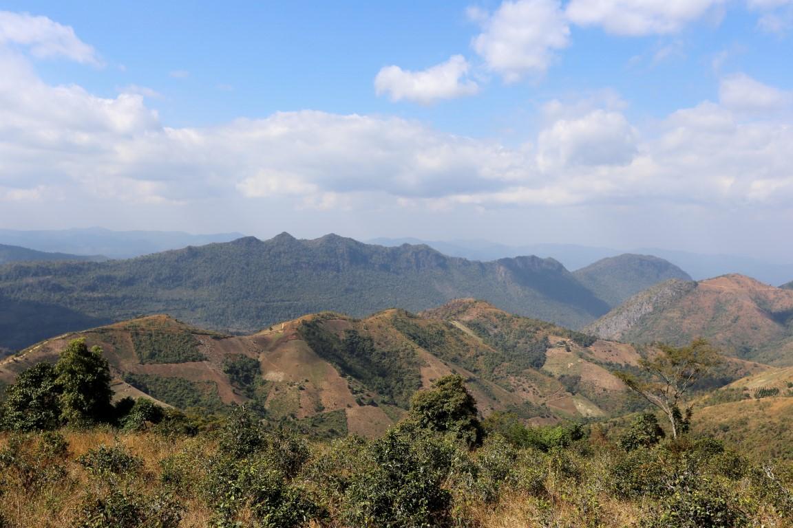 hory Kalaw