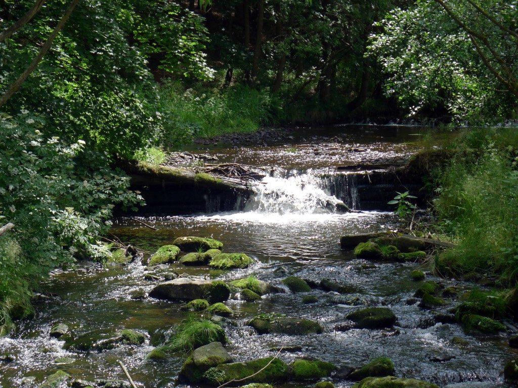 řeka Fryšávka