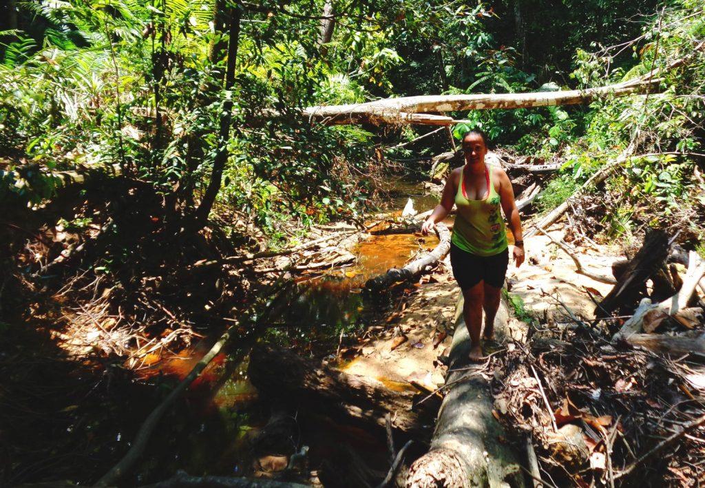 cesta džunglí - Binusan air terjun