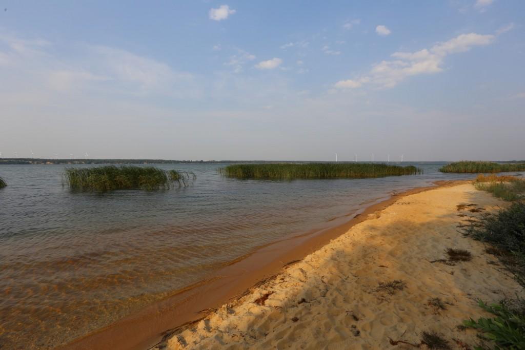 Scheibe See