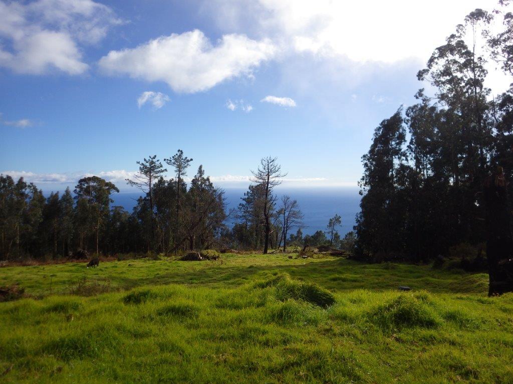 výlet okolo Levada Calheta