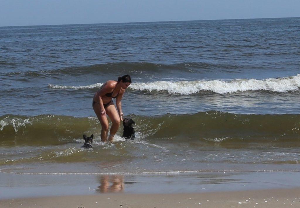 Psí pláž Damerow