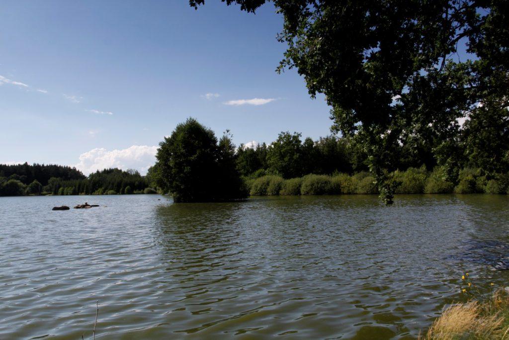 Vitanovy  za Hadím rybníkem