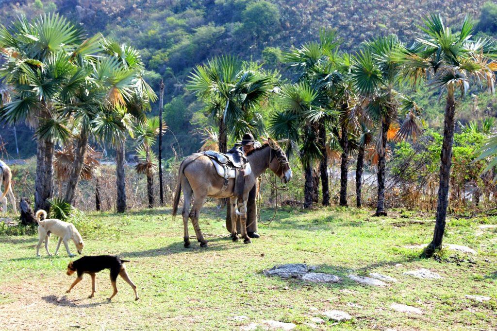 na vyhlidce Mirador de La Loma del Puerto
