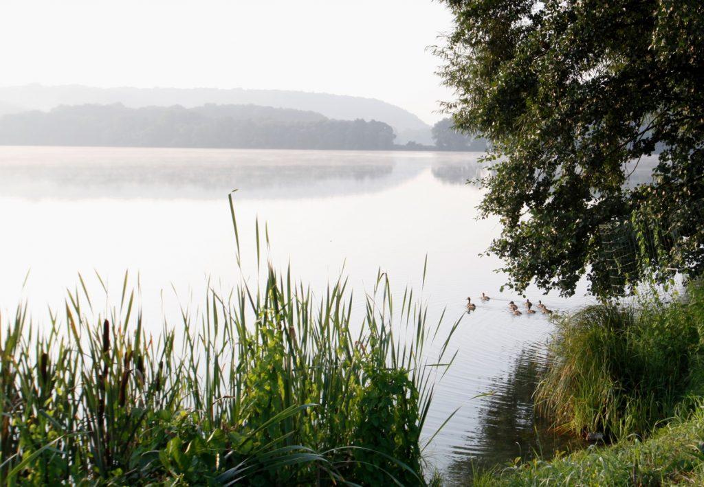 Moravičanské jezero