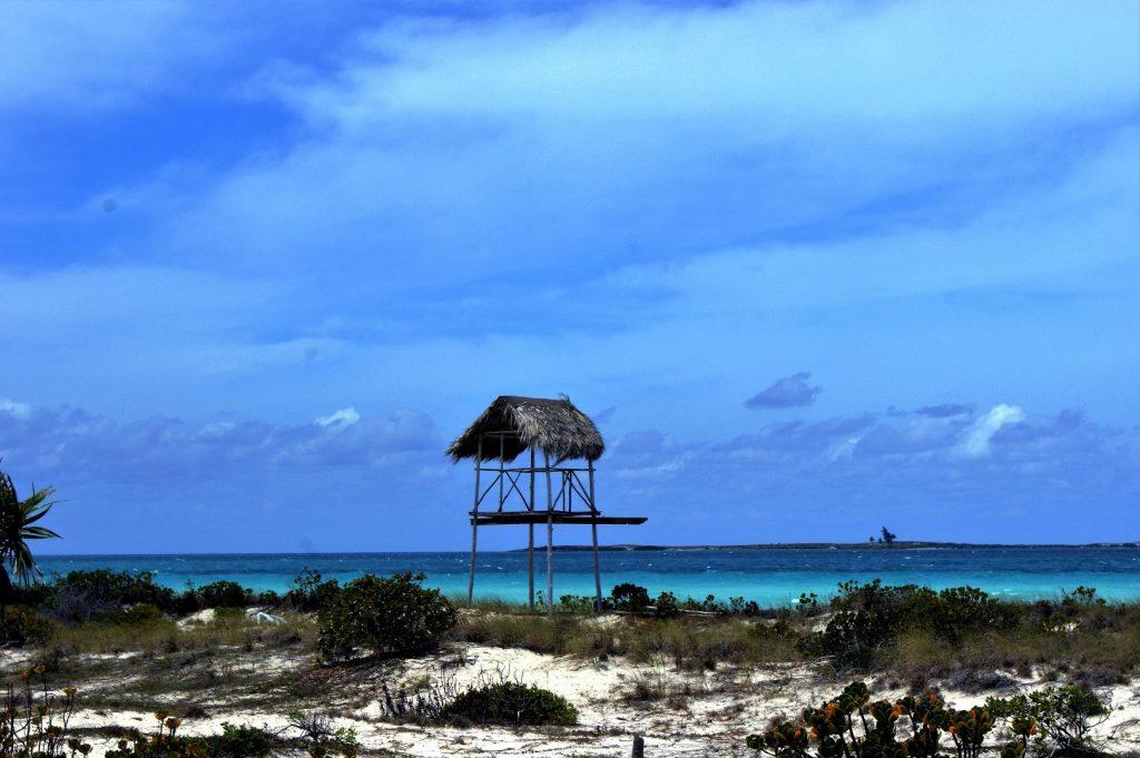 cesta lesem na Playa las Gaviotas