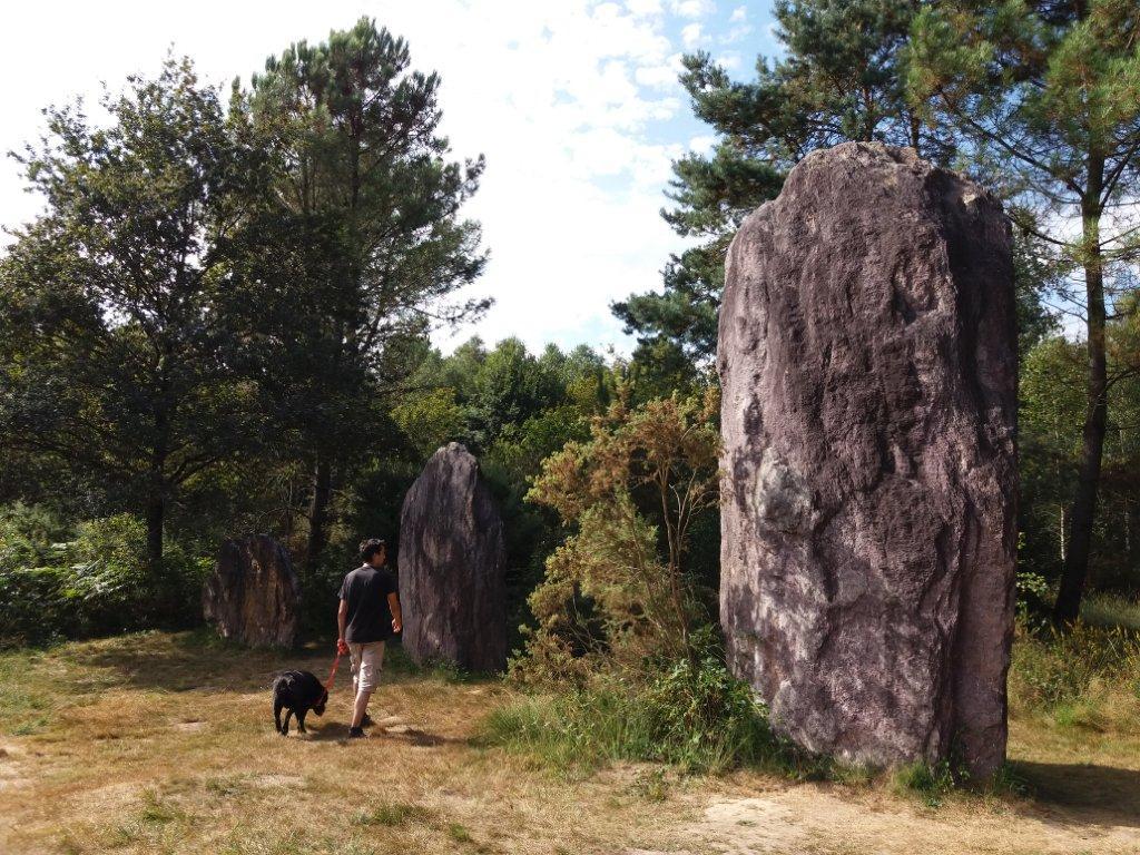 Menhirs de Monteneuf