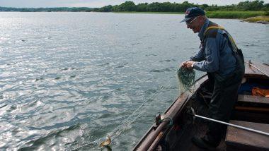 Sea Catch Water Fishing Fish Net åland