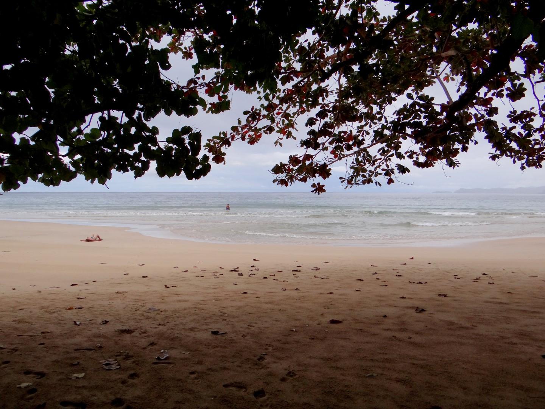 Velká ptácká pláž